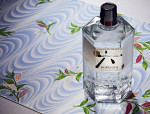 Get Ready For Japanese Gin